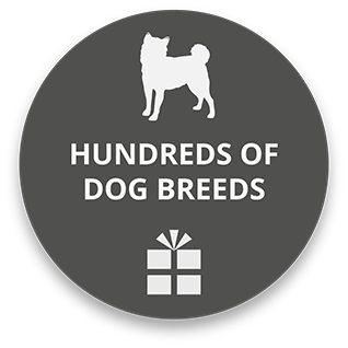 gifts-icon-dogs-grey