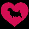 Norfolk Terrier Gifts