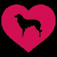 Estrela Mountain Dog Gifts
