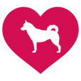 Siberian Husky Gifts