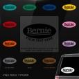 Bernie Sanders Custom (or not) Sticker