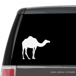Camel Custom (or not) Custom Decal