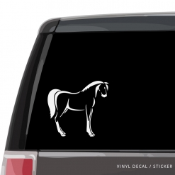 Horse Custom (or not) Custom Decal