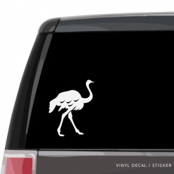 Ostrich Custom (or not) Custom Decal