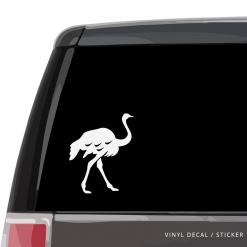 Ostrich Custom (or not) Custom Decal