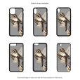 Barn Owl iPhone Cases