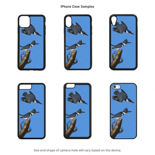 Belted Kingfisher iPhone Cases